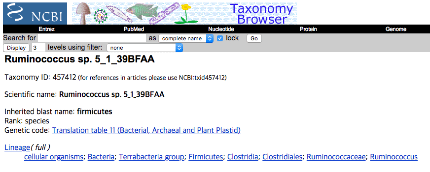 NCBI taxonomy page for Ruminococcus sp. 5_1_39BFAA